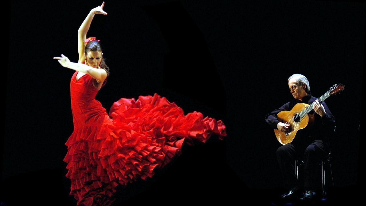 Resultado de imagen para flamenco