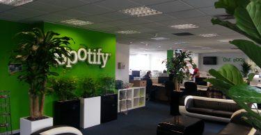 trabajo industria musical Spotify, director de progamacion de contenido