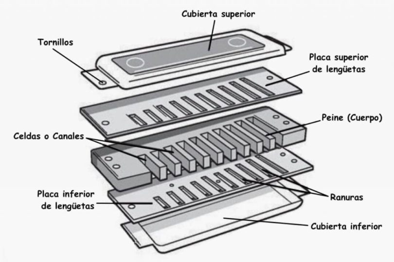 partes-de-la-armonica