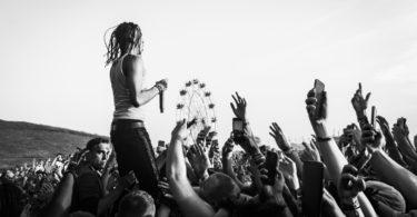 que tipo de fan de festivales ers