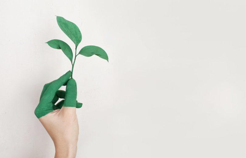 sostenibilidad en festivales