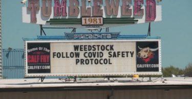 weedstock-covid