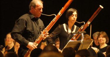 fagot, historia del fagot, como hacer un fagot, como elegir fagot, mantenimiento fagot