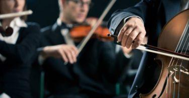 lider seccion orquestal