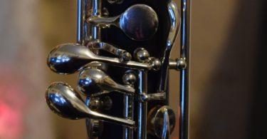 guia oboe, tipos de oboe, mantenimiento oboe, como elegir oboe